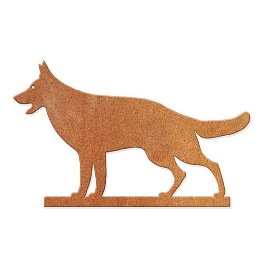 Schäferhund - stehend