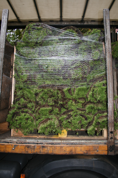 Transportkosten Vegetationsmatten nach Herstellerangabe